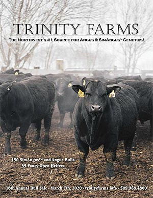 Trinity Farms 18th Annual Bull Sale, March 7, 2020.  Click for catalog