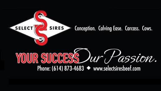 Select Sires Beef
