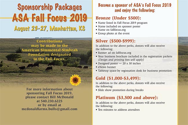 Fall Focus 2019