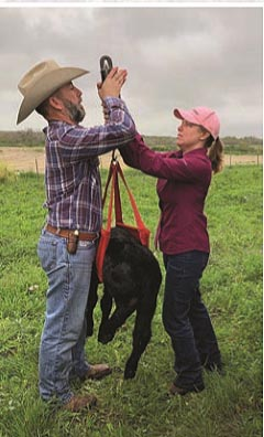 Tom Brothers Ranch is highly committed to collecting important data.