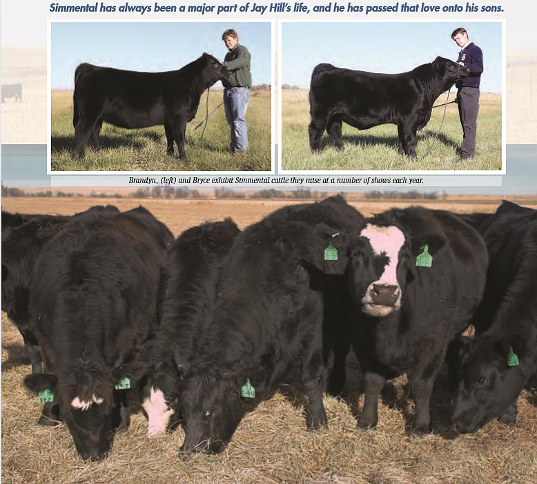 http://www.simangus.us/mags/for_future-of_simmental1.jpg
