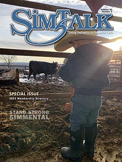 SimTalk Magazine - Current Issue